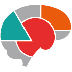 vign-neurocog.jpg